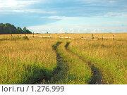 Купить «Проселочная дорога в поле», фото № 1276999, снято 15 декабря 2019 г. (c) Виктор Сагайдашин / Фотобанк Лори