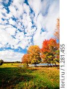 Купить «Осенний пейзаж», фото № 1281455, снято 3 октября 2009 г. (c) Евгений Захаров / Фотобанк Лори