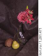 Купить «Натюрморт», фото № 1281471, снято 11 декабря 2009 г. (c) Алешина Екатерина / Фотобанк Лори