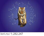 Тигр. Стоковая иллюстрация, иллюстратор Цепков Андрей / Фотобанк Лори