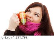 Зимние мечты. Стоковое фото, фотограф Владислав Иванов / Фотобанк Лори