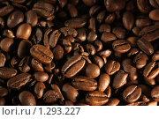 Текстура  зерна кофе. Стоковое фото, фотограф Яковлева Наталья / Фотобанк Лори
