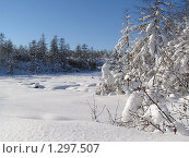 Тайга замой. Стоковое фото, фотограф Таир Сейтхалилов / Фотобанк Лори