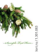 Купить «Еловая ветка с новогодними игрушками», фото № 1301083, снято 17 декабря 2009 г. (c) Виталий Радунцев / Фотобанк Лори