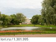 Купить «Юсуповский дворец. Санкт-Петербург», эксклюзивное фото № 1301995, снято 29 июля 2009 г. (c) Александр Щепин / Фотобанк Лори