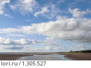 Отлив на Финском заливе. Стоковое фото, фотограф Виталий Фурсов / Фотобанк Лори