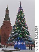 Купить «Новогодняя елка на Манежной площади. Снегопад», эксклюзивное фото № 1322567, снято 20 декабря 2009 г. (c) Алёшина Оксана / Фотобанк Лори