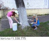 Побелка деревьев в Профессиональном училище (2009 год). Редакционное фото, фотограф Юрий Зуев / Фотобанк Лори