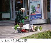 Купить «Город Мытищи. Пожилая женщина торгует зеленью», эксклюзивное фото № 1342519, снято 31 июля 2009 г. (c) lana1501 / Фотобанк Лори