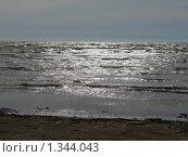 Берег морской. Стоковое фото, фотограф Константин Григорьев / Фотобанк Лори