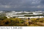 Купить «Осень на Балтийском море», фото № 1344243, снято 4 октября 2009 г. (c) Анна Лурье / Фотобанк Лори
