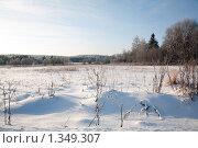 Купить «Зимний пейзаж», фото № 1349307, снято 3 января 2010 г. (c) Алексей Калашников / Фотобанк Лори