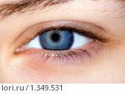Купить «Синий женский глаз», фото № 1349531, снято 6 января 2010 г. (c) Сергей Дубров / Фотобанк Лори