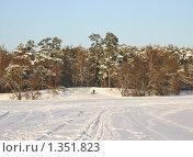 Купить «Парк Серебряный бор, зима», эксклюзивное фото № 1351823, снято 4 января 2010 г. (c) Наталия Шевченко / Фотобанк Лори