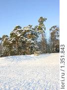 Купить «Парк Серебряный бор, зима», эксклюзивное фото № 1351843, снято 4 января 2010 г. (c) Наталия Шевченко / Фотобанк Лори