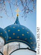 Купола Рождественского собора в Суздальском Кремле (2010 год). Редакционное фото, фотограф Анфимов Леонид / Фотобанк Лори