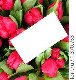 Букет тюльпанов с поздравительной открыткой. Стоковое фото, фотограф Виталий Радунцев / Фотобанк Лори