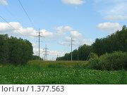 Купить «Линия электропередачи», фото № 1377563, снято 24 июля 2009 г. (c) Александр Тараканов / Фотобанк Лори
