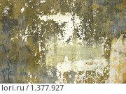 Купить «Обшарпанная стена», фото № 1377927, снято 30 апреля 2008 г. (c) Елисей Воврженчик / Фотобанк Лори