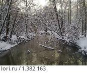 Купить «Главный Ботанический сад. Москва», фото № 1382163, снято 1 января 2010 г. (c) Елена Колтыгина / Фотобанк Лори