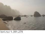 Туманное утро острова Койвусаари. Стоковое фото, фотограф Николай Пуцын / Фотобанк Лори