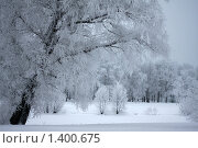 Купить «Зима на Крестовском острове», фото № 1400675, снято 10 января 2010 г. (c) Наталья Белотелова / Фотобанк Лори