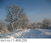 Купить «Зимняя дорога», фото № 1404259, снято 4 января 2010 г. (c) Юлия Козинец / Фотобанк Лори