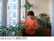 Купить «Красивая женщина ухаживает за комнатными цветами на лоджии», эксклюзивное фото № 1406951, снято 23 января 2010 г. (c) Юрий Морозов / Фотобанк Лори