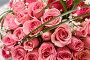 Букет из роз, фото № 1407587, снято 12 августа 2007 г. (c) Владимир Сурков / Фотобанк Лори