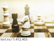 Шахматы. Стоковое фото, фотограф Andrejs Pidjass / Фотобанк Лори