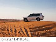 Сафари на джипе в пустыне (2010 год). Редакционное фото, фотограф Анна Диордиева / Фотобанк Лори