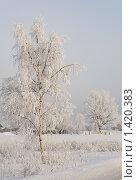 Купить «Зимний пейзаж», фото № 1420383, снято 16 января 2010 г. (c) Андрей Лабутин / Фотобанк Лори