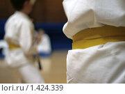 Желтые пояса. Стоковое фото, фотограф Аврам / Фотобанк Лори