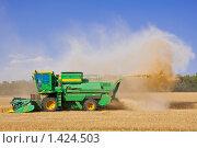 Купить «Комбайн на пшеничном поле», фото № 1424503, снято 14 января 2008 г. (c) bashta / Фотобанк Лори