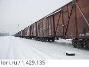 Грузовой железнодорожный состав. Стоковое фото, фотограф Елена Носик / Фотобанк Лори