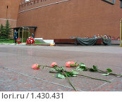 Купить «Москва. Александровский сад. Пост номер один», эксклюзивное фото № 1430431, снято 18 мая 2008 г. (c) lana1501 / Фотобанк Лори