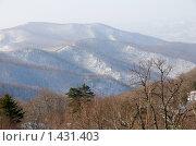 Южный склон горы Чёрный Куст и прилегающие хребты. Стоковое фото, фотограф Сергеев Игорь / Фотобанк Лори