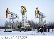 Купить «Остановленные нефтяные насосы. Западная Сибирь.», фото № 1437307, снято 26 ноября 2009 г. (c) bashta / Фотобанк Лори