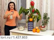 Купить «Девушка опрыскивает цветы, ароматизирует и увлажняет помещение», фото № 1437803, снято 1 февраля 2010 г. (c) Надежда Глазова / Фотобанк Лори
