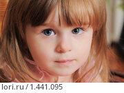 Купить «Маленькая девочка. Два года», фото № 1441095, снято 29 ноября 2008 г. (c) Федор Королевский / Фотобанк Лори