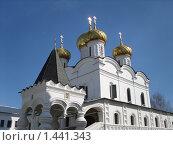 Ипатьевский монастырь. Стоковое фото, фотограф Денис Красюков / Фотобанк Лори