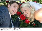Портрет молодоженов на фоне роз. Стоковое фото, фотограф Евгений Курлыкин / Фотобанк Лори