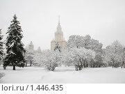 Купить «Зима в Москве», фото № 1446435, снято 18 февраля 2009 г. (c) Наталья Волкова / Фотобанк Лори