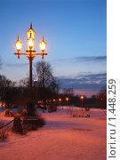 Купить «Зимняя аллея вечером», фото № 1448259, снято 16 февраля 2009 г. (c) Анастасия Некрасова / Фотобанк Лори