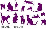Набор кошек. Стоковая иллюстрация, иллюстратор Светлана Арешкина / Фотобанк Лори
