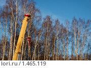 Купить «Стрела подъёмного крана в берёзовой роще», фото № 1465119, снято 1 января 2010 г. (c) Юрий Синицын / Фотобанк Лори