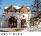 Купить «Спасские ворота. Коломенское. Москва», фото № 1465143, снято 7 февраля 2010 г. (c) Екатерина Овсянникова / Фотобанк Лори
