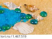 Купить «Ракушки на соли для ванны», фото № 1467519, снято 10 февраля 2010 г. (c) Елена Блохина / Фотобанк Лори