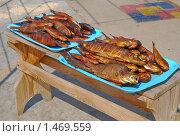 Купить «Копченая рыба», эксклюзивное фото № 1469559, снято 8 апреля 2009 г. (c) Алёшина Оксана / Фотобанк Лори