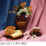 Купить «Натюрморт с цветами, чаем и хлебом», фото № 1471463, снято 5 февраля 2010 г. (c) Куликова Вероника / Фотобанк Лори